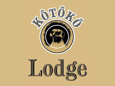 Kotoko Lodge - Kotoko Lodge is a beautifully decorated Rustic Lodge situated in Bloemfontein for anyone who is looking for the ideal Wedding Venue. Just give us a call or visit our website.